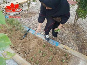 IMG 20190109 185604 569 300x225 آئین گل و درخت کاری در جوار شهدای ارامنه اهواز