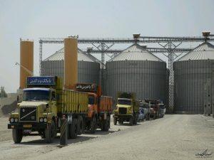 n83048195 72572382 300x225 مجوزپرداخت کرایه حمل گندم به سیلوهای خوزستان صادرشد