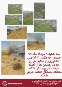 IMG 20190730 203316 215x300 آتش سوزی در اراضی کشاورزی و طرح های درختکاری کلگه