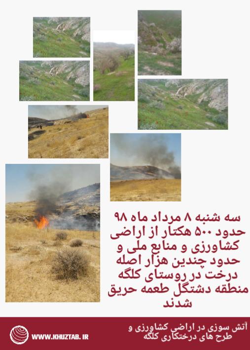 IMG 20190730 203316 آتش سوزی در اراضی کشاورزی و طرح های درختکاری کلگه