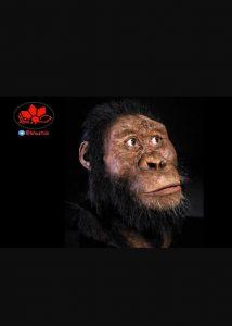 IMG 20190830 223849 702 214x300 این تصویر انسان 4 میلیون سال پیش است !