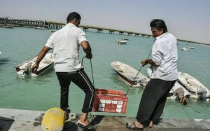 IMG 20191018 051547 470 300x187 سازمان شیلات ایران با اختصاص اعتبار تکمیل اسکله بحرکان موافقت کرد