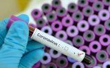 61583718 160x100 به ناپایدار شدن کروناویروس در گرما امیدوار نیستیم
