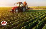 IMG 20200327 190529 324 160x100 پیش بینی جهش تولید در سه محصول اساسی کشاورزی خوزستان