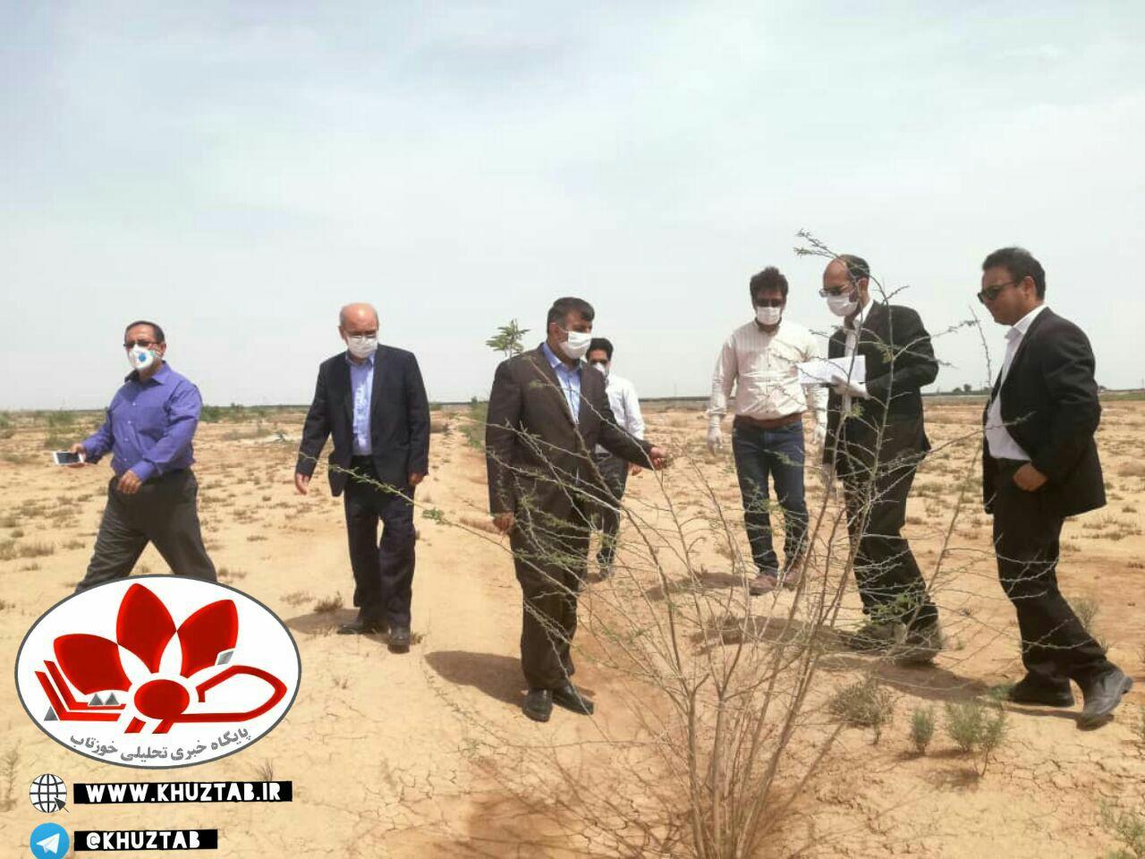 IMG 20200407 230107 607 برنامههای مقابله با ریزگرد در خوزستان نباید رها شوند