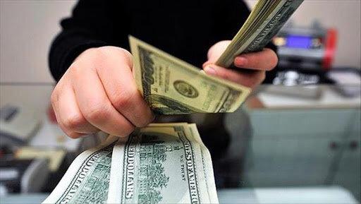 IMG 20200711 WA0108 ضربالاجل تعهدات ارزی، اقتصاد را با چالش مواجه میکند