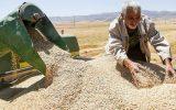 IMG 20210509 174201 968 160x100 خرید تضمینی یک میلیون تن گندم و کلزا در خوزستان